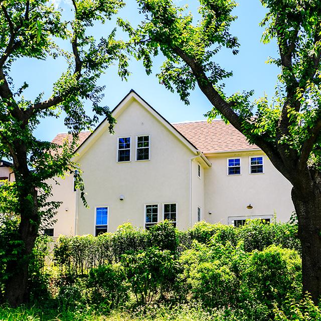 木漏れ日が降り注ぐ塗り壁の家